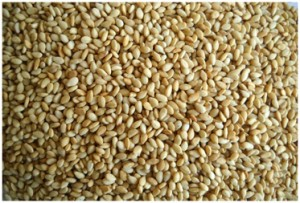 toasted-natural-sesame-seeds.jpg